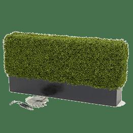 Уход за растениями - Студия Фитодизайна
