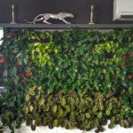 Вертикальное озеленение и комплексное в квартире