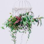 Флористика и декор florik2 150x150