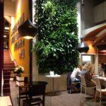 Вертикальное озеленение gudvajn 150x150
