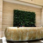 Вертикальное озеленение stena 1 150x150