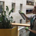 Уход за растениями viber image 150x150
