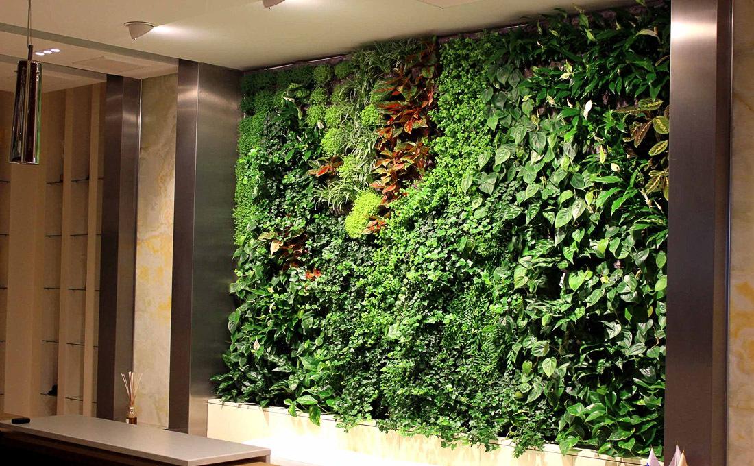 вертикальный сад, вертикальное озеленение