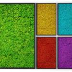 Озеленение мхом, стабилизированные растения 02 1 150x150