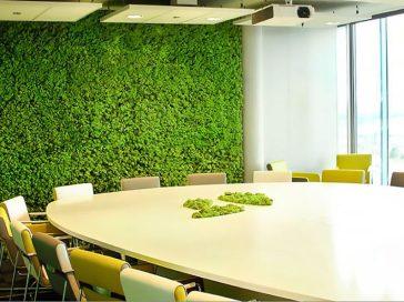 Озеленение мхом, стабилизированные растения