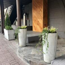 Озеленение террасы ресторана Reberbar, г. Киев
