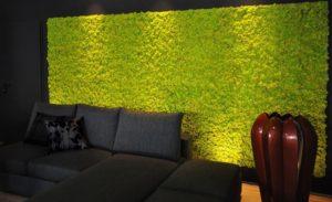 Озеленение интерьера