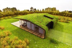 Озеленение крыши, террасы цена Zelenaya kryisha 55 768x512 300x200