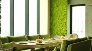 Озеленение мхом foto mha v interere 35 300x168