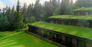 Озеленение крыши, террасы цена ozeleneniye krish 002 min 300x153