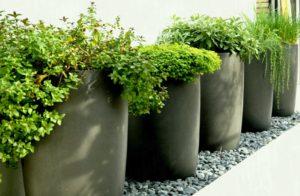 Уход за растениями Киев black gardening planters ideas modern best decoration home joanne russo homesjoanne 300x196
