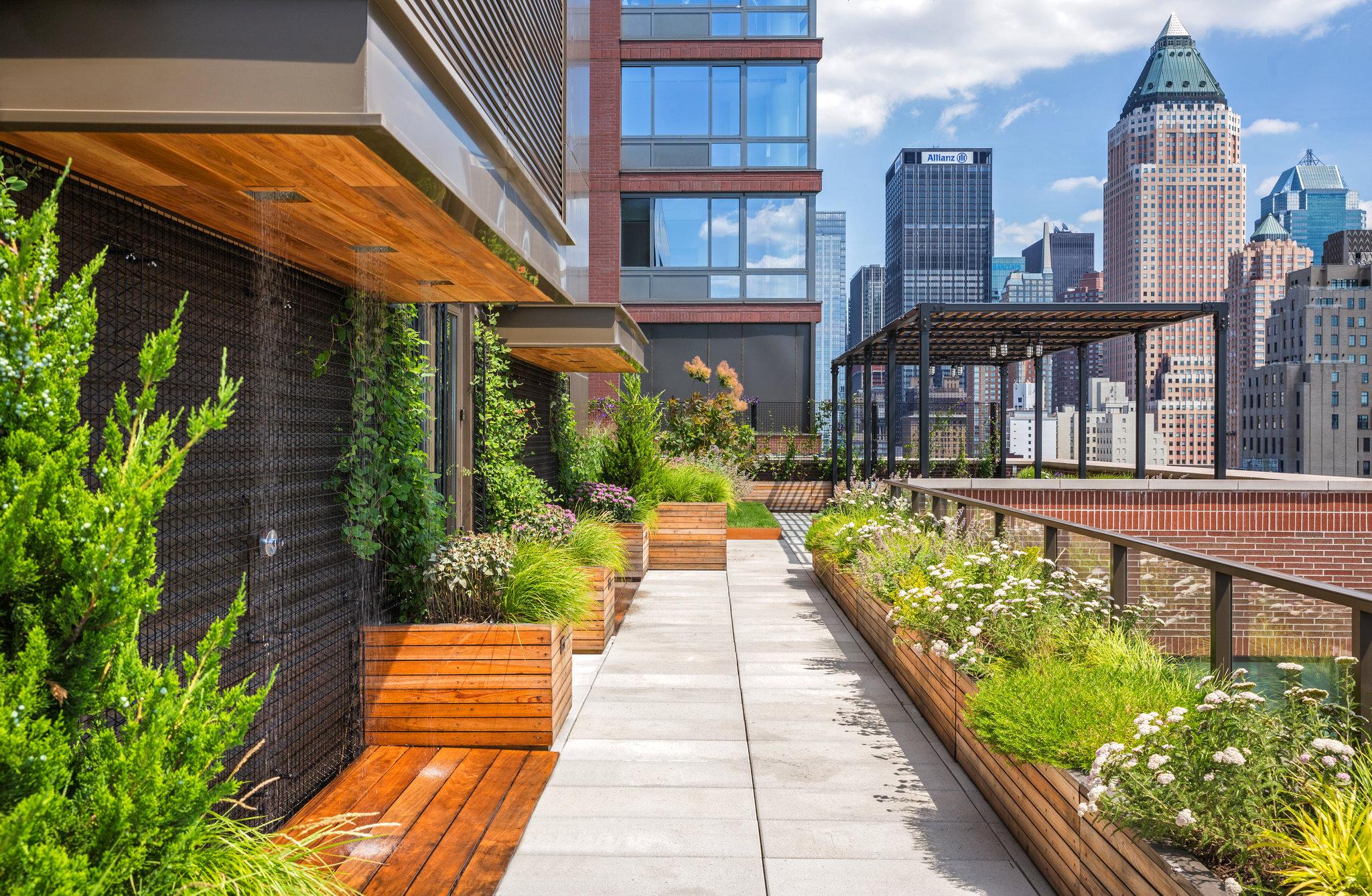 озеленение крыши