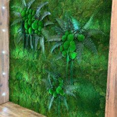 Фитостена из стабилизированного мха и растений, 5 кв.м.