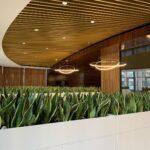 Озеленение офиса в БЦ Царский