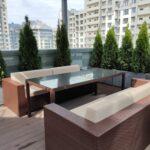 Озеленение крыши террасы, Туи в кашпо из бетона